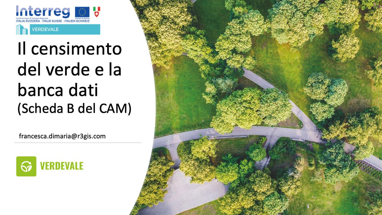 Il censimento del verde e la banca dati (Allegato B CAM)