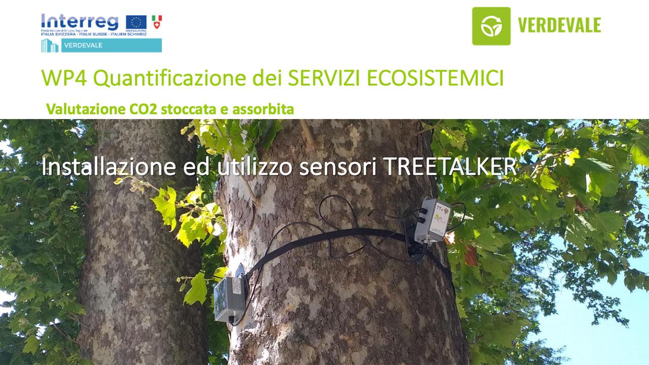 L'installazione di sensori digitali sugli alberi a Bolzano